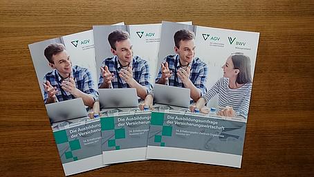 Ausbildungsumfrage der Versicherungswirtschaft 2017 erschienen
